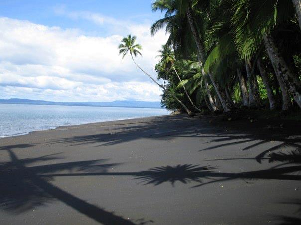 Black Sand Beach Costa Rica